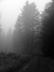 V hmle 2
