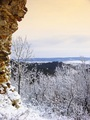 Pohľad do zimy