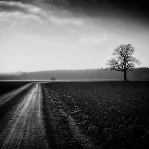 Život je cesta
