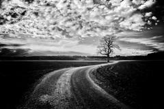 Cesta za šťastím