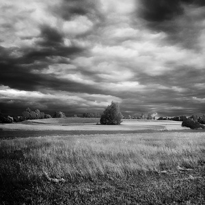 Ticho pred búrkou