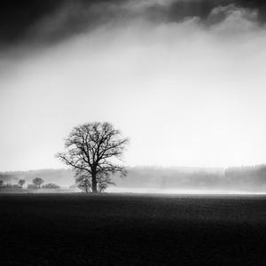 Strážca hmly