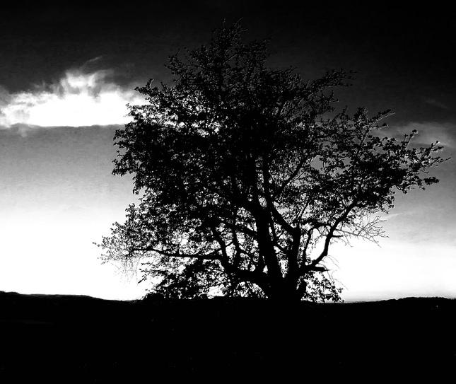 Nastala tma a ticho ...
