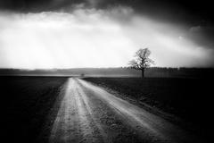 Život je cesta ...