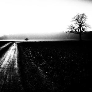 Cesta do nekonečna