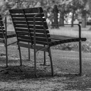letná chvíľka v parku