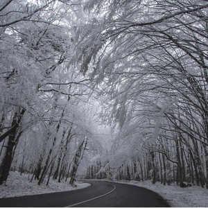 zima, zimička