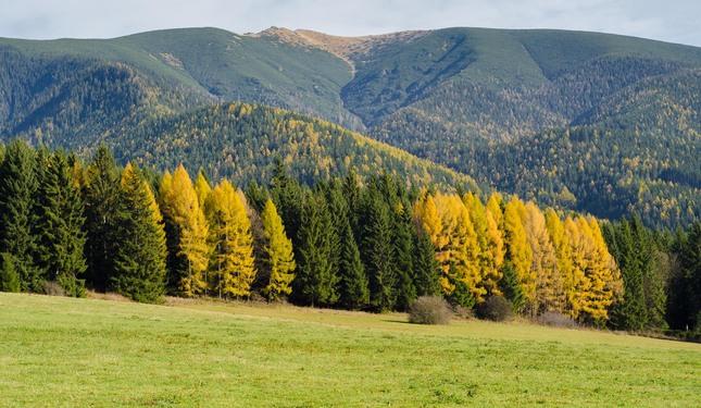 Jesen pod Tatrami