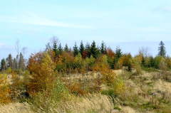 jesenne farby