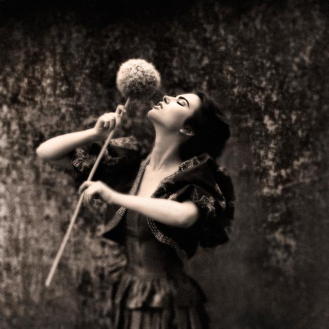 Evelyn N. B.
