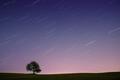 Sám pod nočnou oblohou II