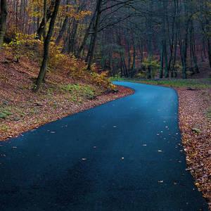 Bicyklová jeseň