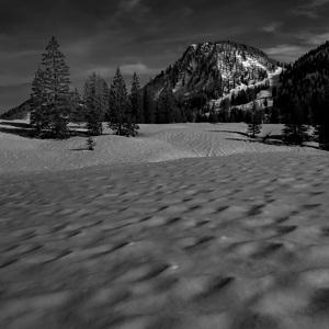 Jarny sneh