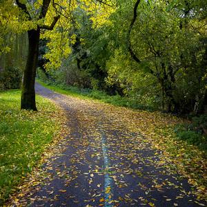Karloveská jeseň