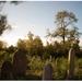 Ako plynie čas na cintoríne