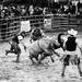 rodeo Hodkovce 2012