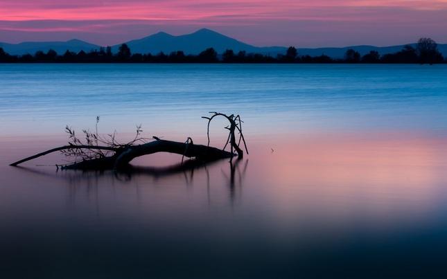 Ružový súmrak ...
