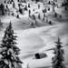 V snehovej perine