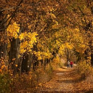 Jesenné prechádzky