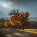 Jesenné cesty
