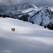 Samotka v horách