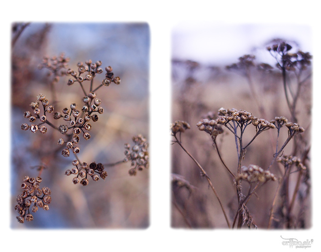 Zimna abstrakcia...