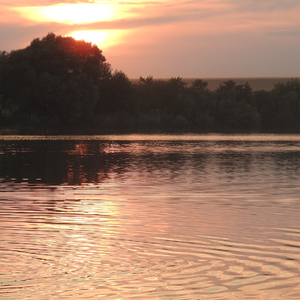 Večer na jazere