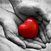 srdce v dlani