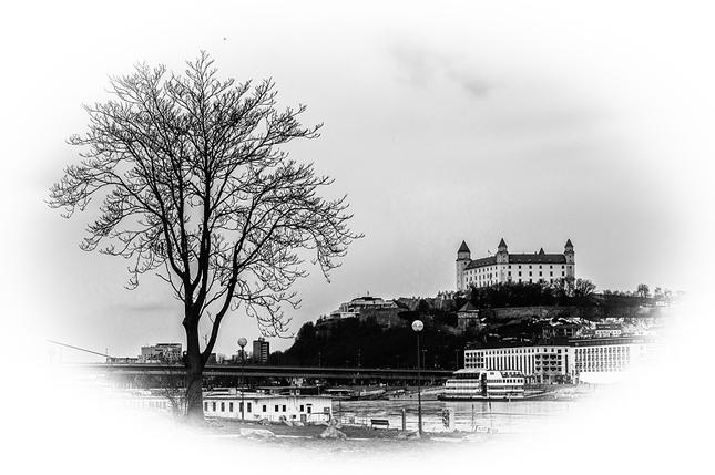 strom a hrad
