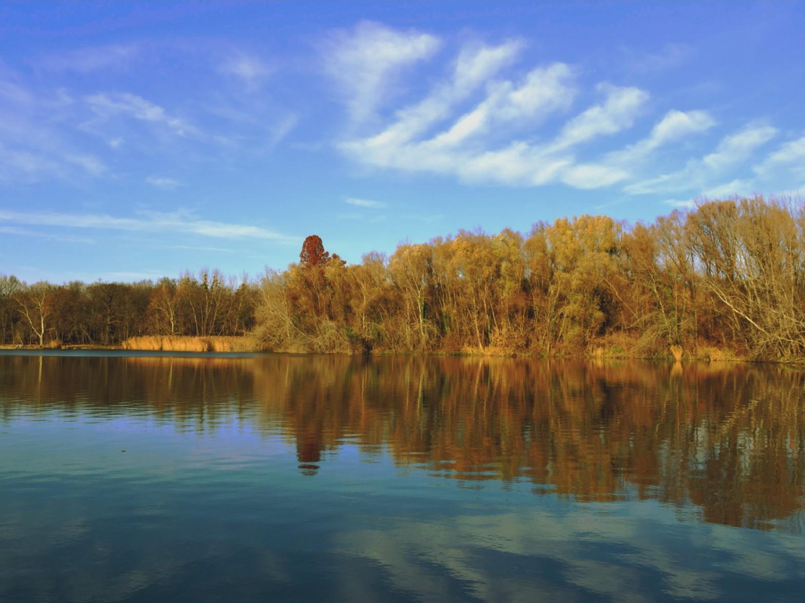 Cseke tó