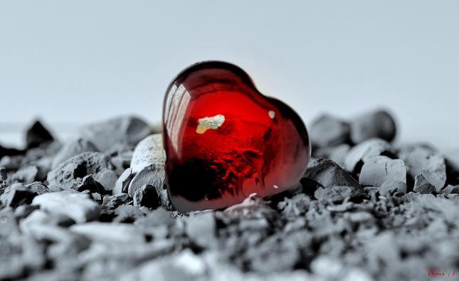 1 srdce mám , komu ho dám ? :)