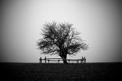 strom...