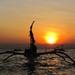 Po stopách delfínov