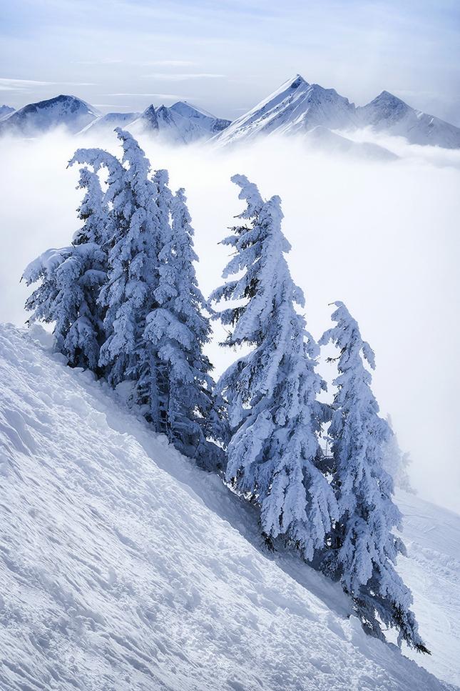 krásy hôr