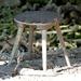 stolička pána Hanuliaka