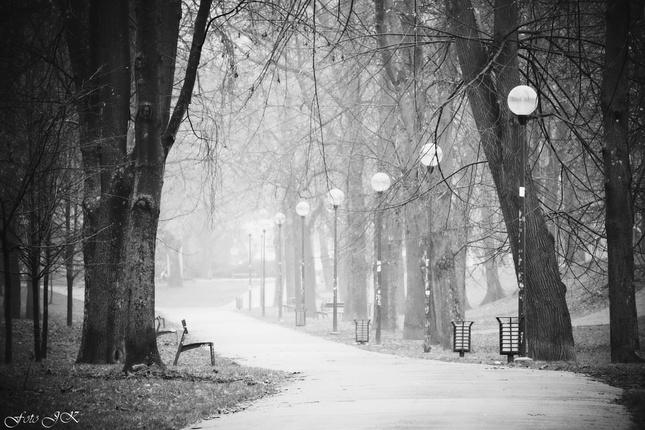 Promenáda v hmle