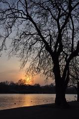 večer v Hyde parku