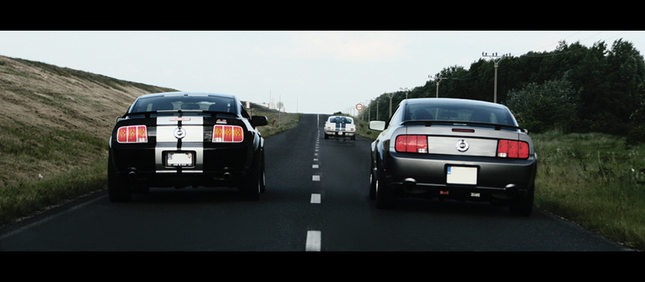 Mustang family