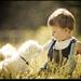 detská radosť