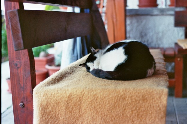 Poobedna siesta