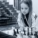 šach !