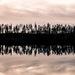Mirror of Finland