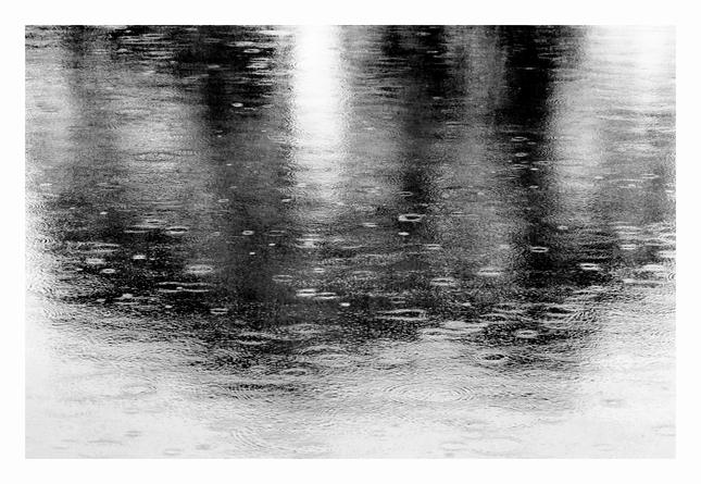 dažďová
