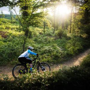 - sunset rider ->
