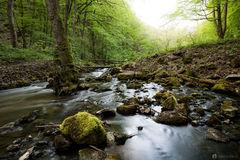 V údolí říčky