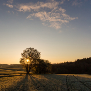 Medzi Petrovicami a slnkom
