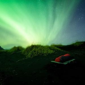 Zelené sny