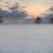 Studena hmla