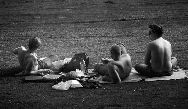 piknik II