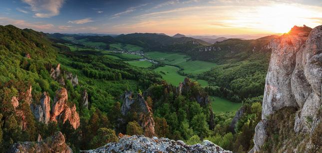 sulovska zelen